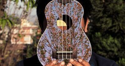 ukulele o que é