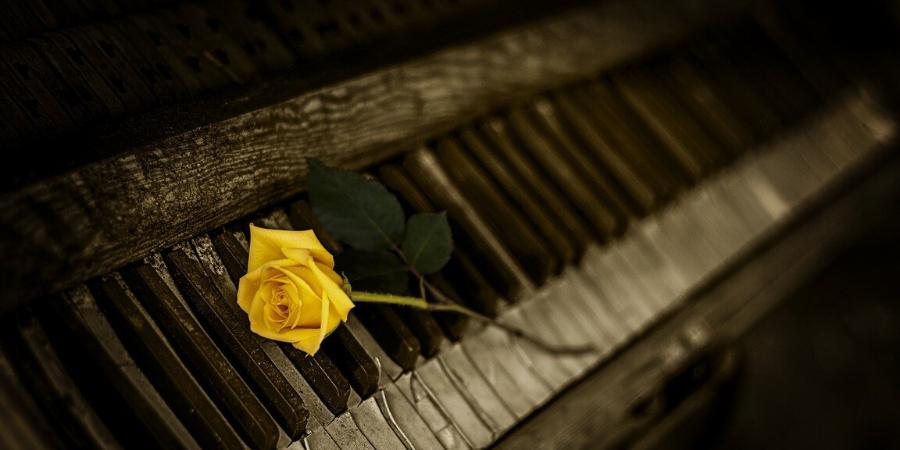 Notas do piano (7)