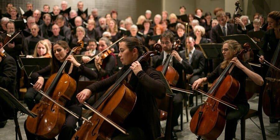instrumentos de uma orquestra 1